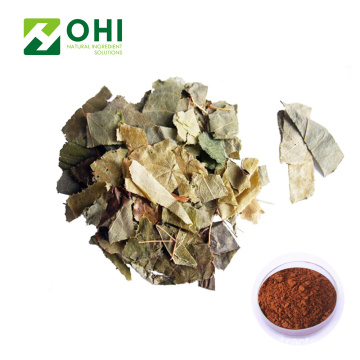 Epimedium Grandiflorum Extract Icariin Powder 20% HPLC