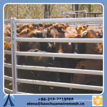 Kundenspezifische Qualität und Stärke Quadrat / Runde / Oval Tubes Stil Vieh Zaun