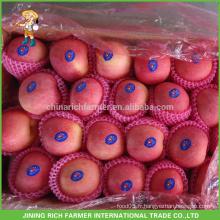 Offrez de la pomme fraîche chinoise délicieuse à bas prix et haute qualité!