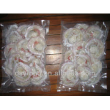 Sea Scallop Price