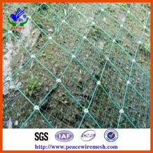 Slope Sns Protective Wire Mesh (preços directos de fábrica) (SNS001)