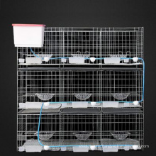 2020 Top Selling High Quality Wire Breeding Pigeon Cage for Sale Electro Galvanized or Hot Dipped Galvanized, PVC Coated Bird