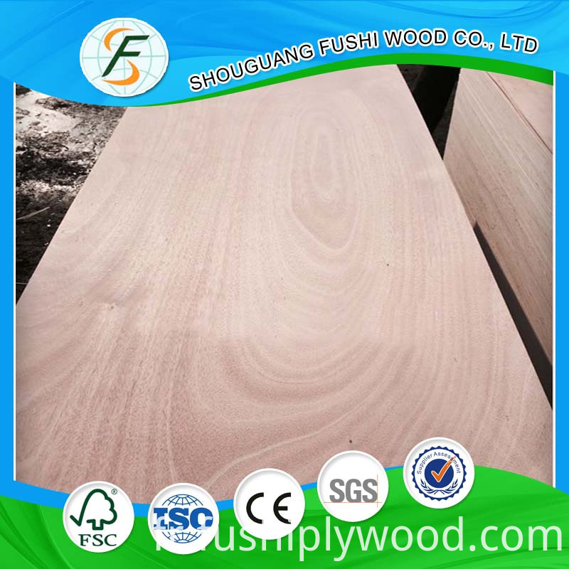door skin plywood 002