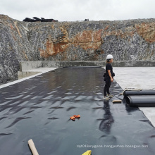 Professional Supply HDPE PVC Waterproofing Geomembrane Sheet for Aquaculture Pond Liner