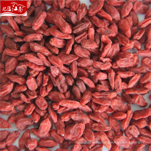Ningxia goji Beere in China