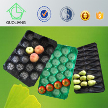 PP Disposable Packaging Container for Fresh Produce Packaging