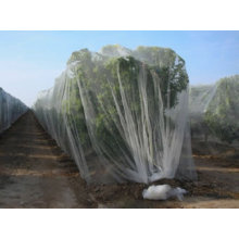 Anti-Butterfly Netting & Agricultural Protection Netting 2m X 8m