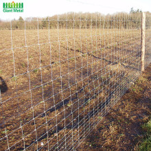 Hinge Joint Galvanized Woven Farm Field Wire Fence
