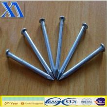 Les ongles de fer les mieux vendus (XA-CN009)