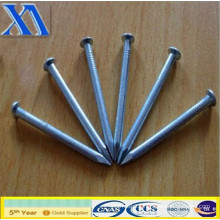 Best Selling Common Iron Nails (XA-CN009)