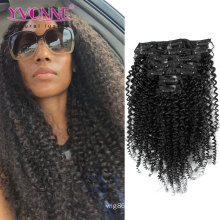 Kinky Curly Brazilian Virgin Hair Clip in Extension