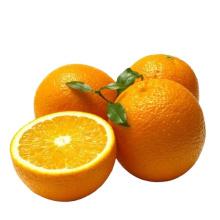 Natural High Quality Sweet Fresh Citrus Mandarin Navel Orange with Low Price