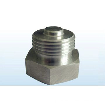 Precision Hex Nut Made by CNC Machine, Hex Standard Shaft.