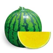 HW05 Disan carne amarela, grandes sementes de melancia sem sementes híbrido F1 verde oval