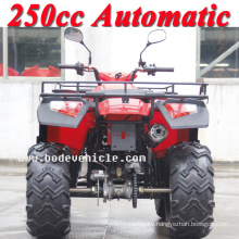 New 250cc Bode Quad Automatic Sports ATV (MC-356)