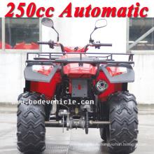 Новые 250cc Боде четырехъядерных автоматическая спорта ATV (MC-356)
