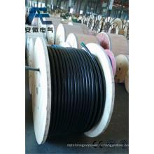 Cu / PVC / Swa / PVC, Câble de commande de puissance, 0,6 / 1 Kv (CEI 60502-1)