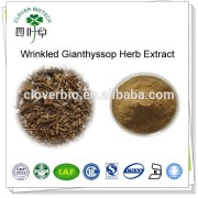 5:1 10:1 natural Agastache rugosus Extract