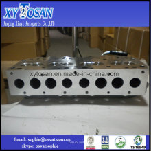 Cabeça de cilindro para Land Rover 300tdi, 2.5tdi Amc 908761 Err5027 / Ldf500180