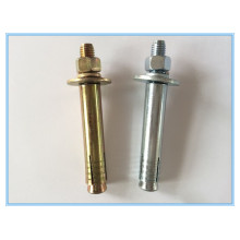 Anchor Bolt/Wedge Anchor Bolt/Expansion Bolt/Wall Plug
