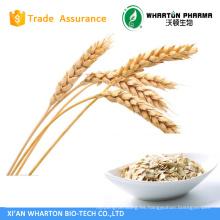 Extracto de avena Beta Glucan / Oat Straw Extracto / Avena Sativa Extract