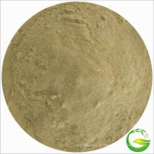 Zinco Fertilizante Aminoácido Chelate