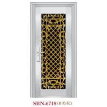 Puerta de acero inoxidable para exteriores (SBN-6718)