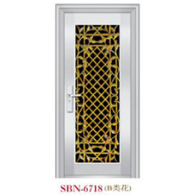 Stainless Steel Door for Outside Sunshine (SBN-6718)