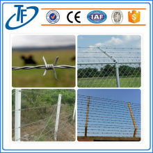 Prison Barbed Wire Fence