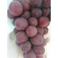Fresh Red Red Grapes