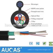 Câble à fibre optique haute qualité à faible prix