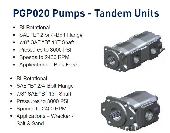 China P3000/P3100 Parker/Commercial/Permco Gear Pump (P20/21