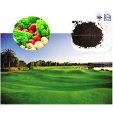 Planta de fertilizante base com extrato de algas marinhas para alimentos verdes