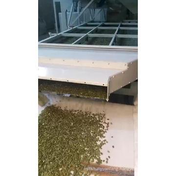shine skin pumpkin seeds kernels gradeAAA 2019 new crop inner mongolia green chinese