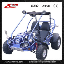 Offroad Adult 2 Seat Racing 150cc Dune Buggy for Sale