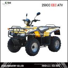 250cc Big Power EEC Farm ATV, ATV Quad avec approbation CEE Hot Popular Cheap Manuelle Embrayage Air Refroidi