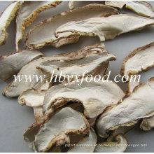 Fatia de cogumelo seco branco orgânico de cogumelo Shiitake