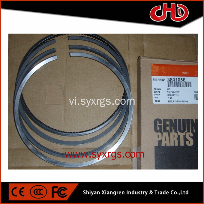 Vòng bi piston NT855 CUMMINS 3801056