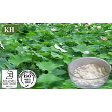 10: 1 Lotus Leaf Extract