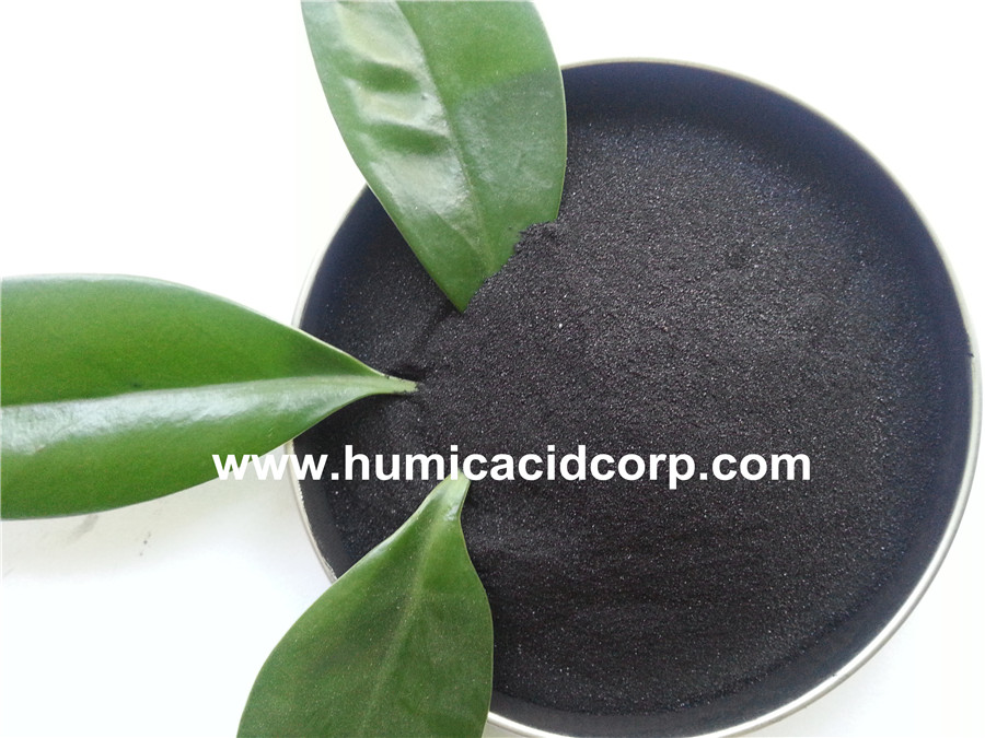 Shinny Powder Potassium Humate From High Grade Leonardite