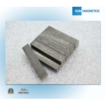 ISO / TS 16949 Certificado Super N52 AlNiCo Magnet
