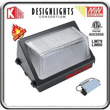 80W LED Wall Pack LED Wall Pack Light Wall Pack LED Meanwell Power and CREE Xte LED Chip CE ETL Dlc