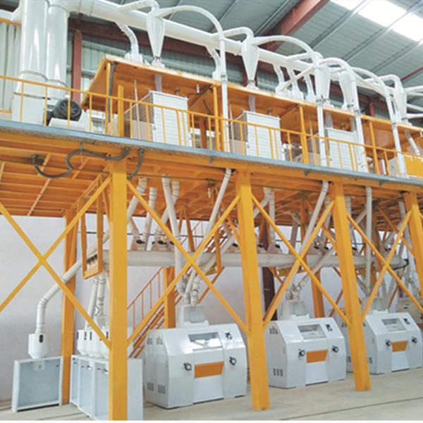 50T maize flour machine