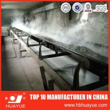 Supply Heat Resistant Conveyor Belt with High Quality