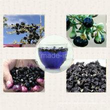 Medlar Dry Fruit Ningxia Organic Black Goji Berry