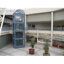Kapsel-Passagier-stabiler panoramischer Besichtigungs-Aufzug