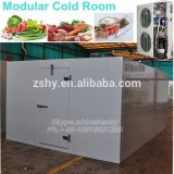 frozen cold room for vegetable,meat and fish cold storage