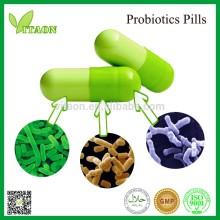 Probiotics supplements Best for intestinal health