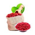 Baya de Goji seca orgánica de Ningxia certificada para la venta al por mayor
