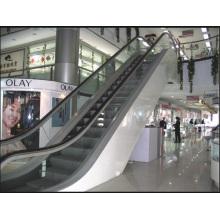 Escaleras mecánicas Aksen de 30 y 35 grados Tipo de puerta interior y exterior